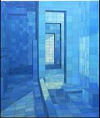 Adriana Varejao: Chambre Dechos = Echo Chamber (catalogo De Expo Sici - Vv.aa.