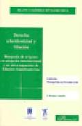 Derecho A La Identidad Y Filiacion: Busqueda De Origenes En Adopcion I - Gomez Bengoechea Blanca