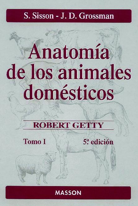 libro anatomia animales domesticos sisson