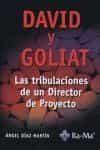 David Y Goliat: Las Tribulaciones De Un Director De Proyecto - Diaz Martin Angel