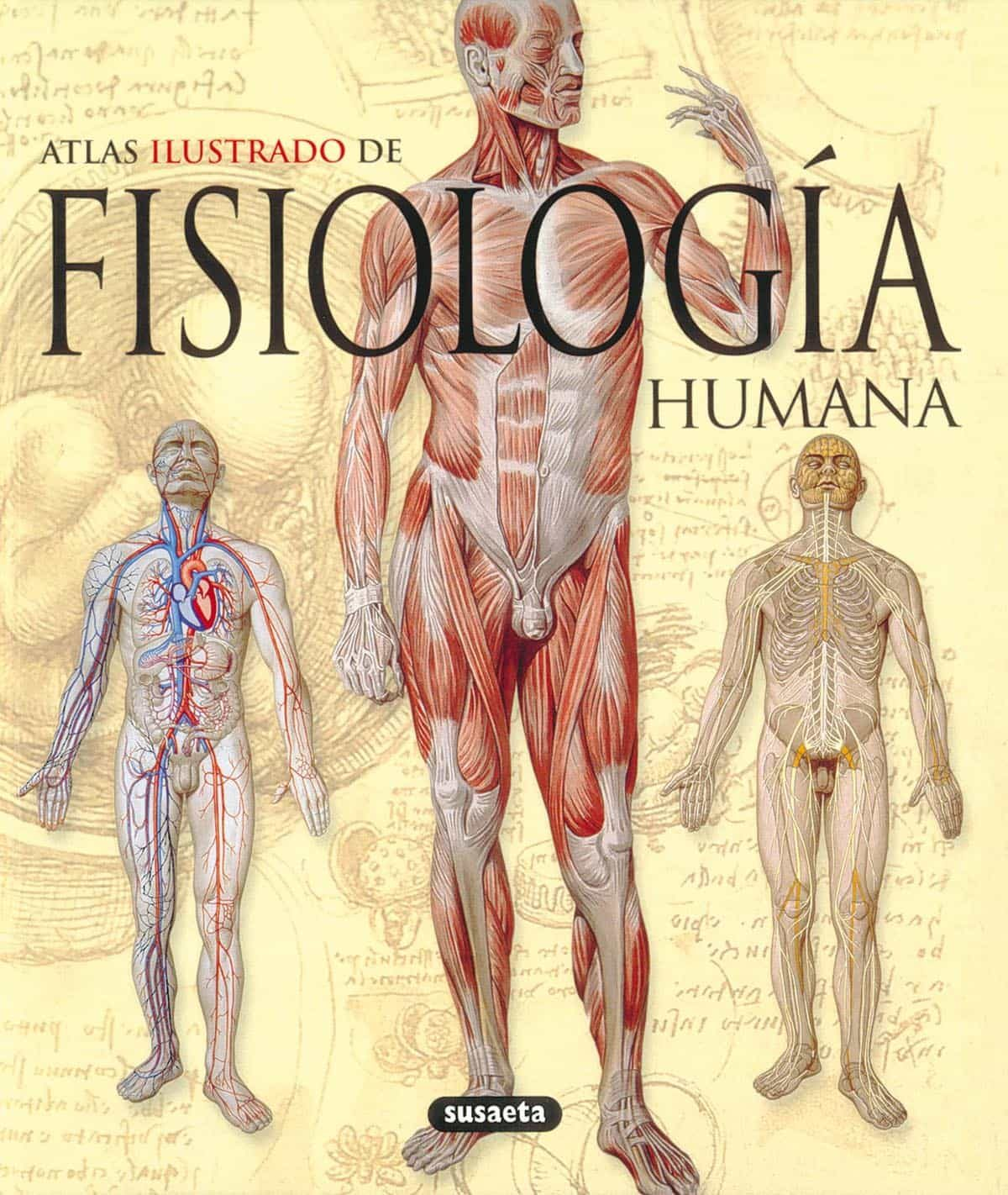 Fisiologia Humana: Atlas Ilustrado - Vv.aa.