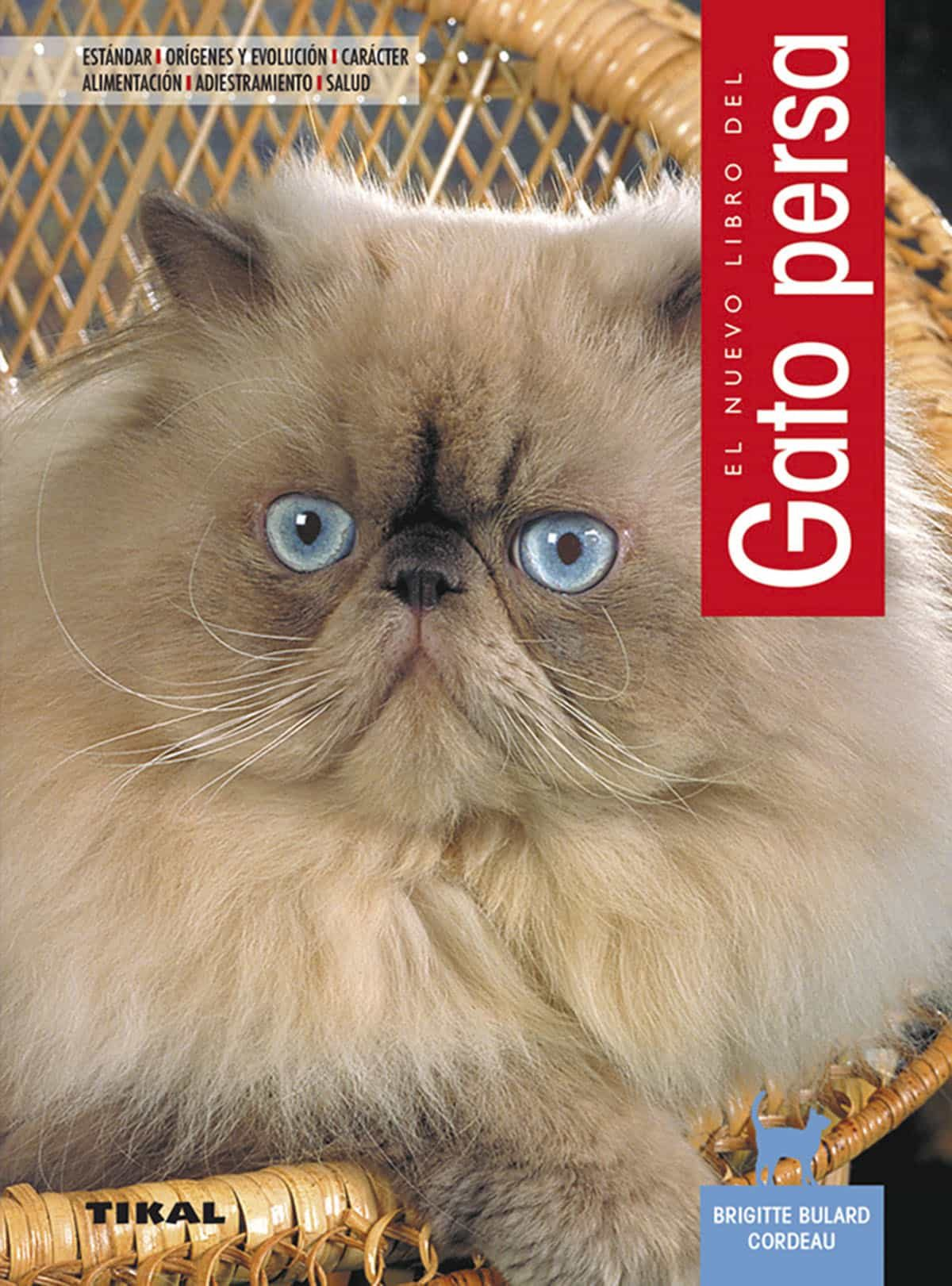 Gato Persa - Cordeau Brigitte Bulard