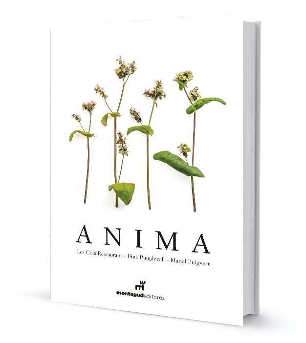 Anima (ed. Bilingüe Español-ingles) - Puigdevall Fina