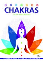 chakras-juan echenique-9788466234054