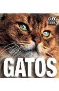 GATOS (GATOS BOOK) di VV.AA.