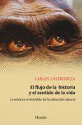 EL FLUJO DE LA HISTORIA Y EL SENTIDO DE LA VIDA di CASTRODEZA, CARLOS