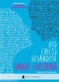 DOS CHICOS BESANDOSE di LEVITHAN, DAVID