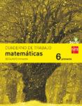 MATEMÁTICAS 6º EDUCACION PRIMARIA CUADERNO 2º TRIMESTRE SAVIA ED 2015 di VV.AA.
