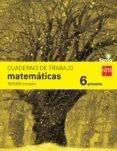 MATEMÁTICAS 6º EDUCACION PRIMARIA CUADERNO 3º TRIMESTRE SAVIA ED 2015 di VV.AA.