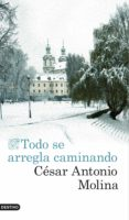TODO SE ARREGLA CAMINANDO de MOLINA, CESAR ANTONIO
